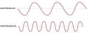 ses-frekanslari-san-dersleri